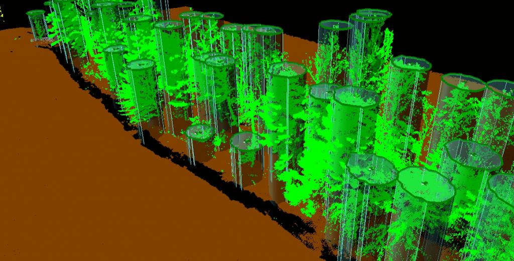 LIDAR - procjena pojedinačnih stabala iz klasificiranog oblaka točaka